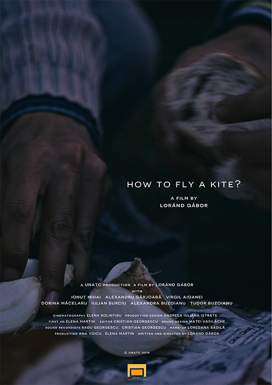 How to Fly a Kite?